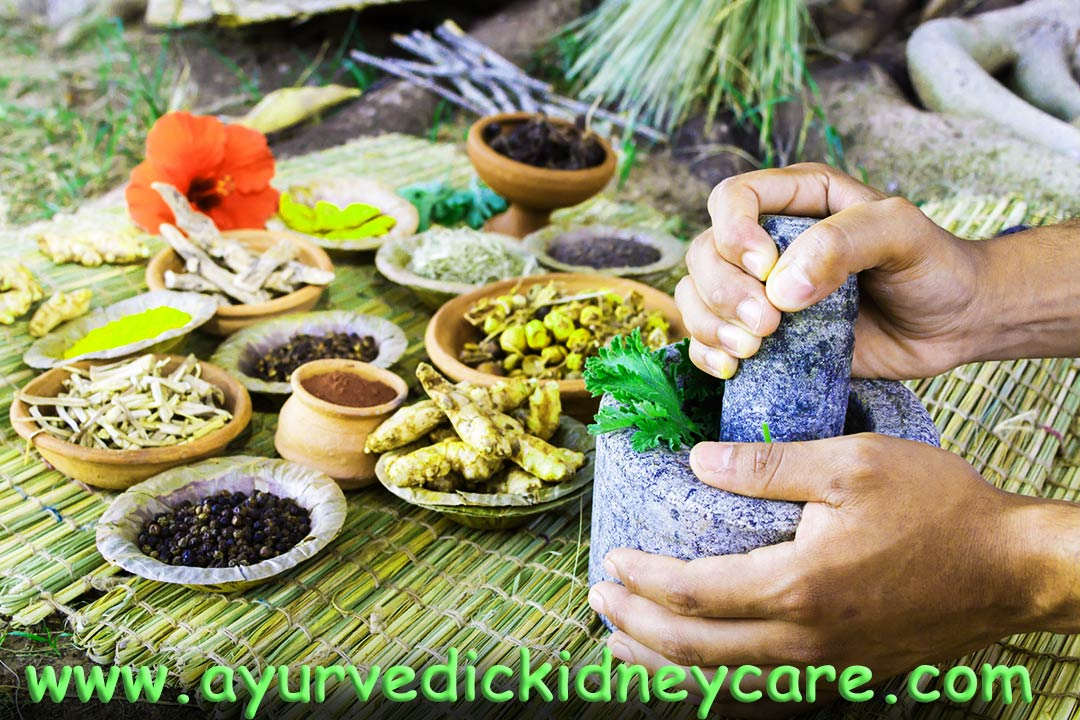 Allopathy and Ayurveda Together For Cure Kidney Disease