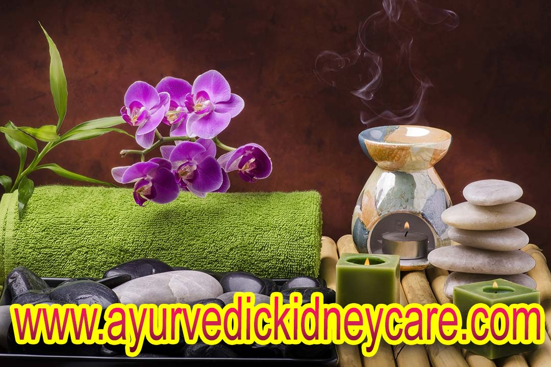 Ayurvedic Kidney Shrinkage Treatment