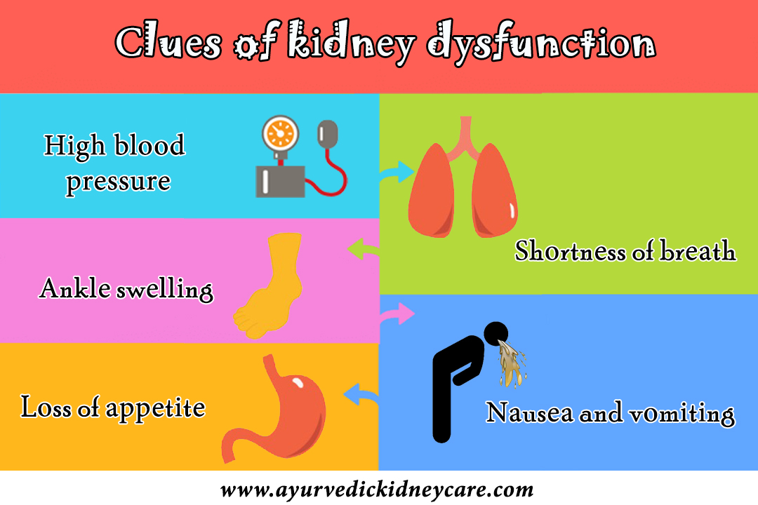 Clues of kidney dysfunction