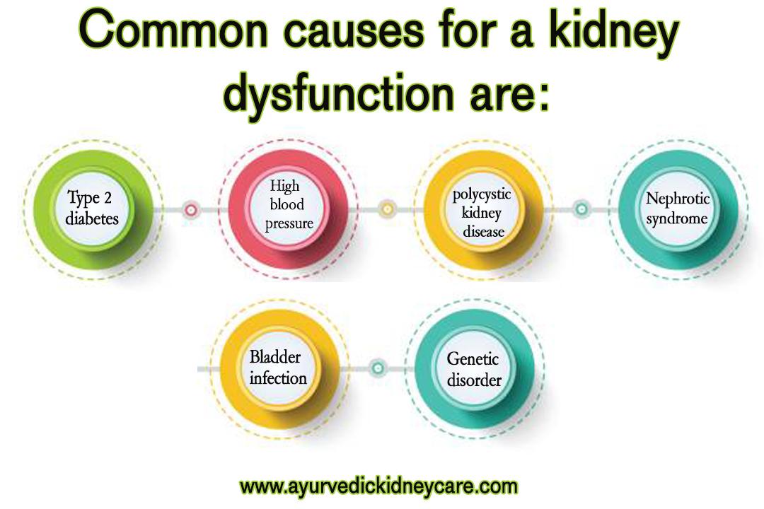 chronic kidney disease diet
