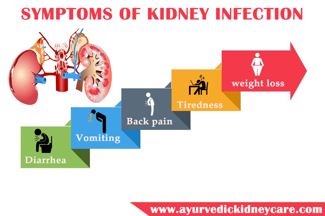 Kidney Infection Weight Loss, Ayurvedic Kidney Care