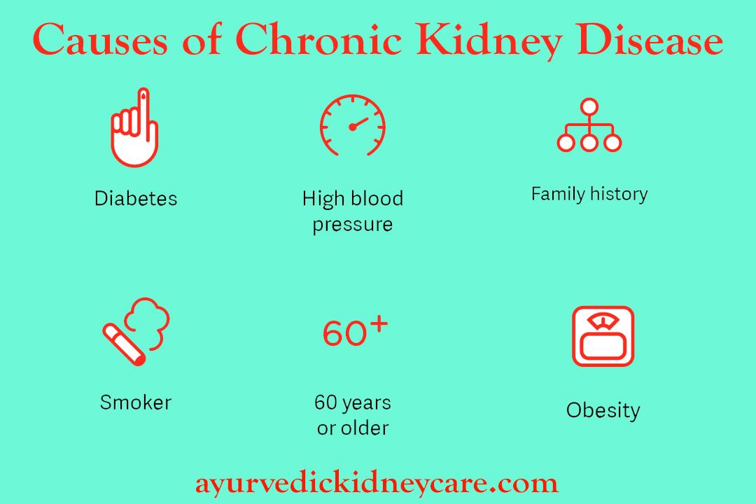 Chronic Kidney Disease Treatments