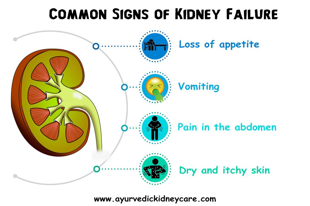 Ayurvedic Doctors for Kidney Failure Treatment In Little Rock, Arkansas