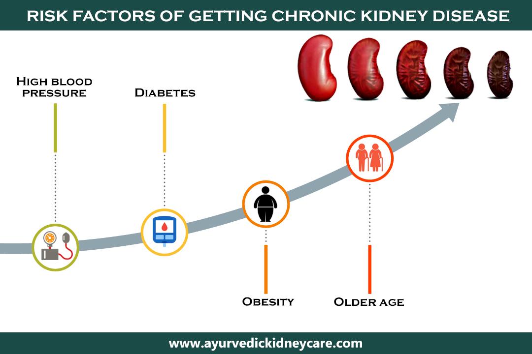 Best Chronic Kidney Disease Diet