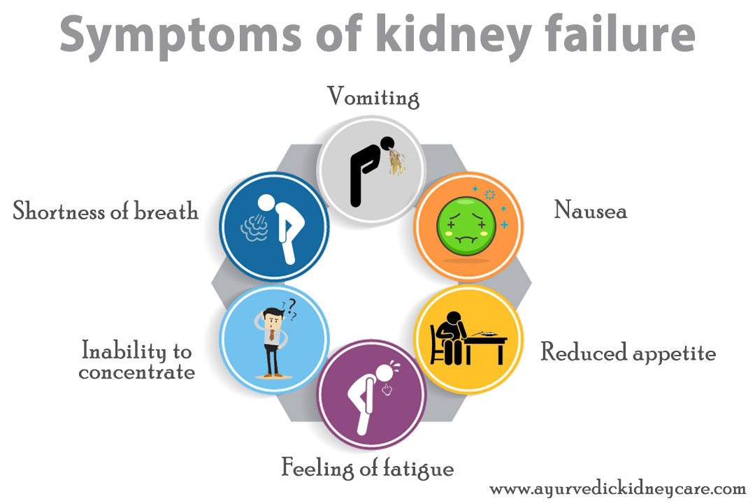 Ayurvedic-Doctors-for-Kidney-Failure-Treatment-in-Hartford,-Connecticut