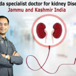 Ayurveda-specialist-doctor-for-kidney-Disease-in-Jammu-and-Kashmir-India12