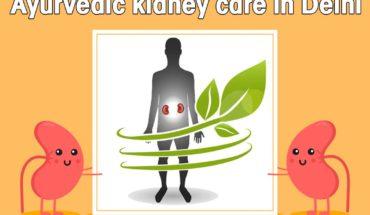 Ayurvedic kidney care in Delhi