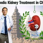 Ayurvedic-Kidney-Treatment-in-Chennai