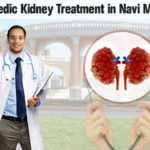 Ayurvedic-Kidney-Treatment-in-Navi-Mumbai