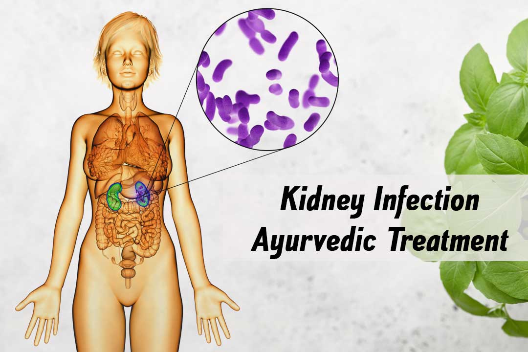 kidney-infection-ayurvedic-treatment