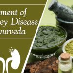 treatment-of-kidney-disease-in-ayurveda