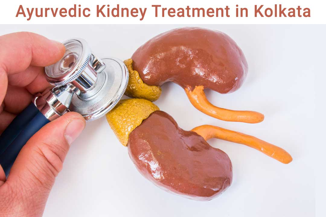 Ayurvedic-Kidney-Treatment-in-Kolkata