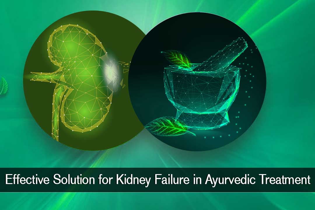 Effective solution for kidney failure in ayurvedic treatment