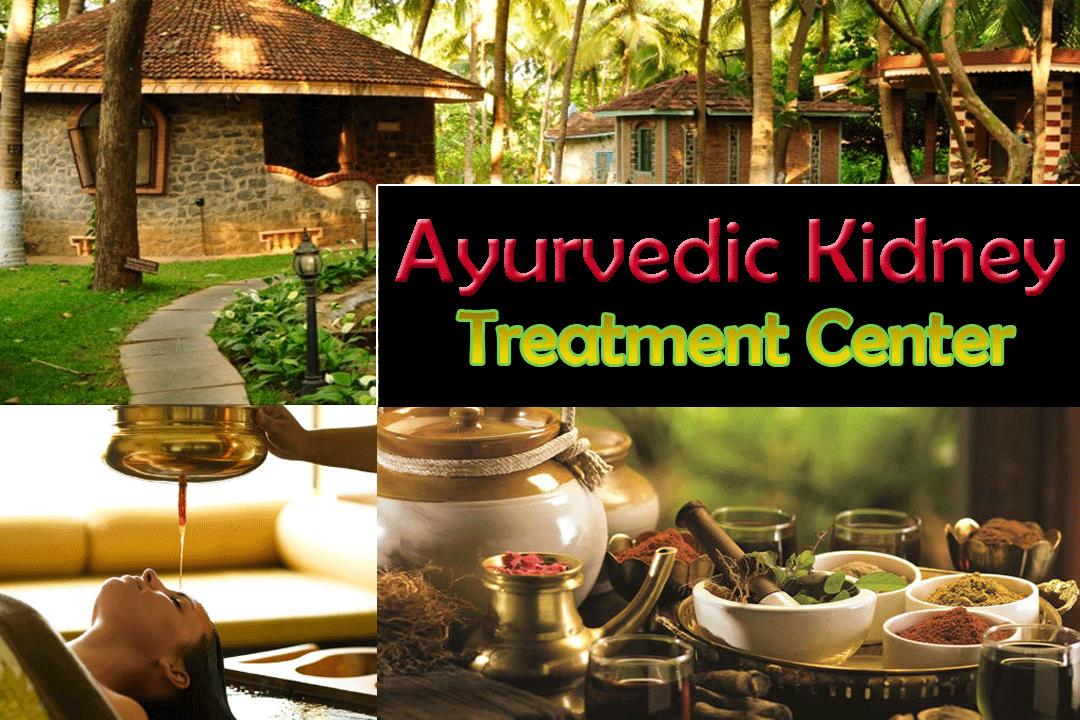 ayurvedic kidney treatment center