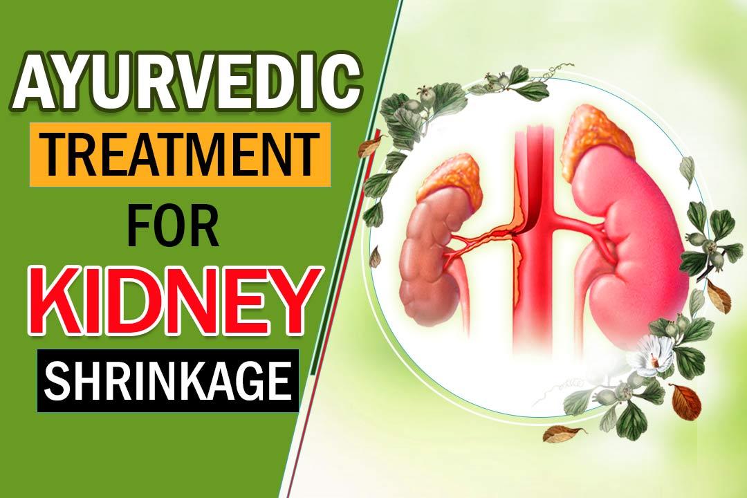 ayurvedic treatment for kidney shrinkage