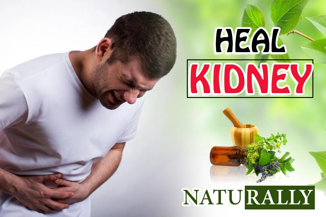 heal kidneys naturally