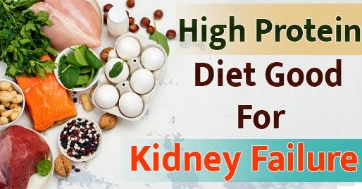 High Protein Diet Good For Kidney Failure
