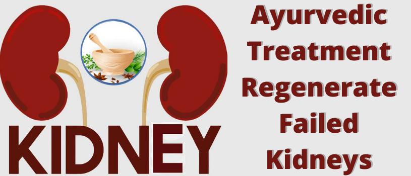 Ayurvedic Treatment Regenerate Failed Kidneys